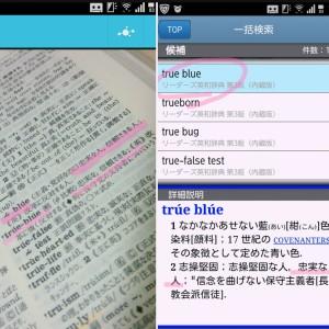 true blueの意味,辞書の写真